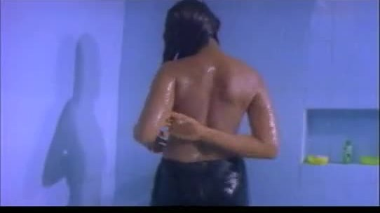 South indian b grade mallu actress 039 s nude scenes
